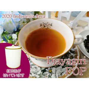 紅茶 ジャワ 茶缶付 ジャイアギリ茶園 FOP/2020 50g 茶葉 リーフ teachaichai