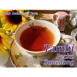 紅茶 ジャワ タンビ茶園 Pecko Souchong/2020 50g 茶葉 リーフ teachaichai
