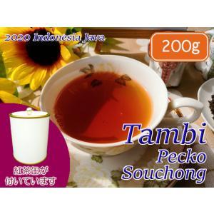 紅茶 ジャワ 茶缶付 タンビ茶園 Pecko Souchong/2020 200g 茶葉 リーフ teachaichai