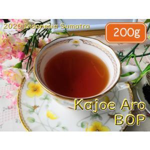 紅茶 スマトラ カジョエアロ茶園 BOP/2020 200g 茶葉 リーフ teachaichai