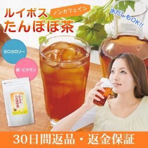ルイボスたんぽぽ茶  ポット用30個入|tealife