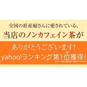 ルイボスたんぽぽ茶  ポット用30個入 tealife 02