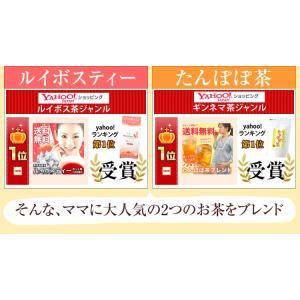 ルイボスたんぽぽ茶  ポット用30個入 tealife 03