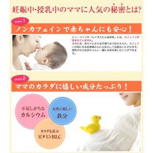 ルイボスたんぽぽ茶  ポット用30個入 tealife 04