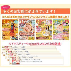 ルイボスたんぽぽ茶  ポット用30個入 tealife 05