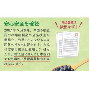 たんぽぽ茶 カップ用30個入|tealife|12