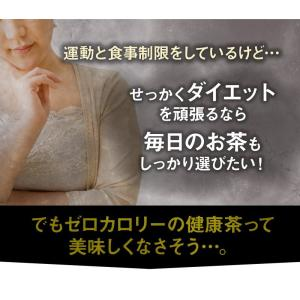 プーアール茶 (プーアル茶)35個入  お茶 tealife 06