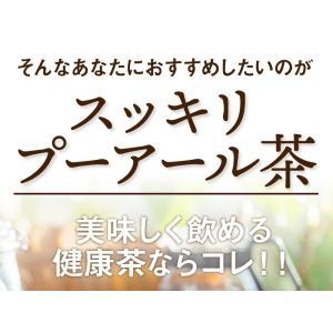 プーアール茶 (プーアル茶)35個入  お茶 tealife 07