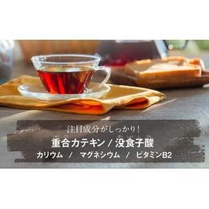 プーアール茶 (プーアル茶)35個入  お茶 tealife 08