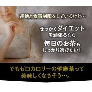 ダイエットプーアール茶(プーアル茶 ) ポット用120個入  お茶|tealife|06