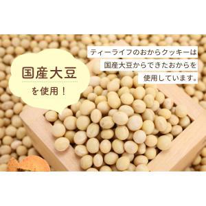 豆乳おからクッキー (プレーン) tealife 06
