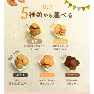 豆乳おからクッキー (プレーン) tealife 07