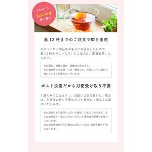 ルイボスティー お茶 |tealife|13