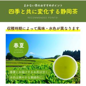 緑茶 まかない茶 100個入 日本茶 お茶 ティーバッグ|tealife|05