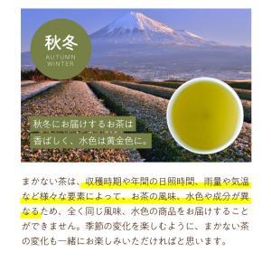 緑茶 まかない茶 100個入 日本茶 お茶 ティーバッグ|tealife|06