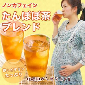 たんぽぽ茶 90個入×60セット|tealife