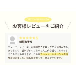 フレーバールイボスティー オレンジ 30個入|tealife|06