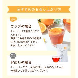 フレーバールイボスティー オレンジ 30個入|tealife|08