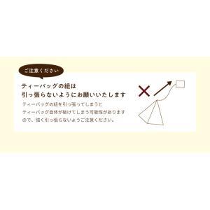 フレーバールイボスティー オレンジ 30個入|tealife|09