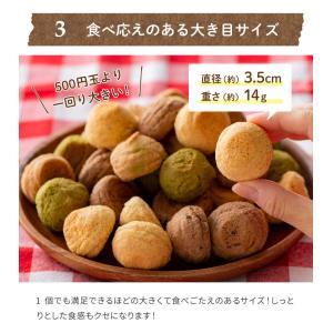 満腹おから豆乳ソフトクッキー 1kg|tealife|15