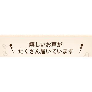 満腹おから豆乳ソフトクッキー 1kg|tealife|04
