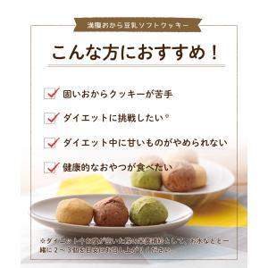 満腹おから豆乳ソフトクッキー 1kg|tealife|07