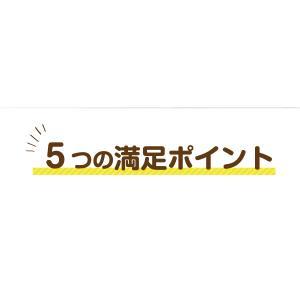 満腹おから豆乳ソフトクッキー 1kg|tealife|08