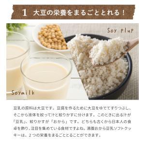 満腹おから豆乳ソフトクッキー 1kg|tealife|09