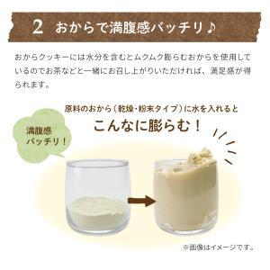 満腹おから豆乳ソフトクッキー 1kg|tealife|10