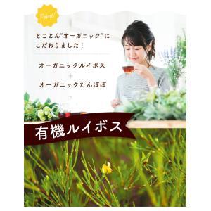 有機ルイボスたんぽぽ茶 30個入  お茶|tealife|03