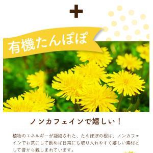 有機ルイボスたんぽぽ茶 30個入  お茶|tealife|05
