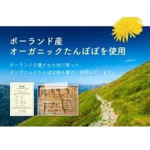 有機ルイボスたんぽぽ茶 30個入  お茶|tealife|06