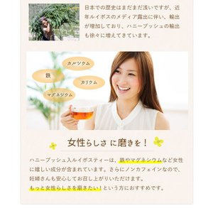 ハニーブッシュ入 ルイボスティー 30個入  tealife 04