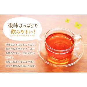 ハニーブッシュ入 ルイボスティー 30個入  tealife 06