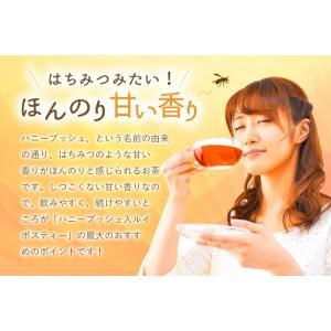 ハニーブッシュ入 ルイボスティー 30個入  tealife 07
