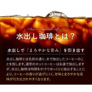水出しコーヒー 10個入×2袋(アイスコーヒー 水出し珈琲) |tealife|05