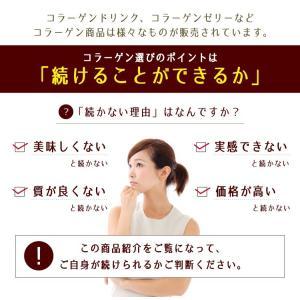 うるりんコラーゲン 100g コラーゲン 粉末/コラーゲンペプチド/コラーゲン 粉|tealife|03