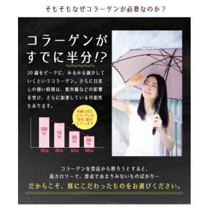 うるりんコラーゲン 100g コラーゲン 粉末/コラーゲンペプチド/コラーゲン 粉|tealife|04