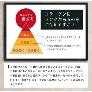 うるりんコラーゲン 100g コラーゲン 粉末/コラーゲンペプチド/コラーゲン 粉|tealife|06