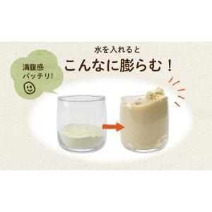 訳あり 豆乳おからマクロビプレーンクッキー1kg|tealife|12