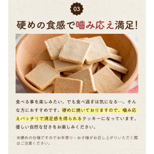 訳あり 豆乳おからマクロビプレーンクッキー1kg|tealife|13