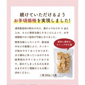 訳あり 豆乳おからマクロビプレーンクッキー1kg|tealife|14