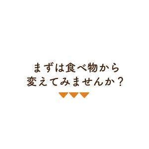 訳あり 豆乳おからマクロビプレーンクッキー1kg|tealife|07