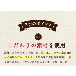 訳あり 豆乳おからマクロビプレーンクッキー1kg|tealife|09