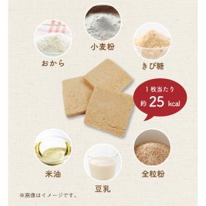 訳あり 豆乳おからマクロビプレーンクッキー1kg|tealife|10