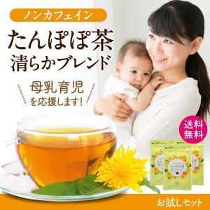 たんぽぽ茶 お試し  お茶|tealife