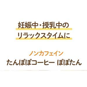 たんぽぽコーヒー カップ用30個入|tealife|04