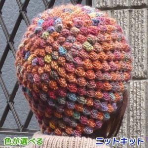 ●編み針セット●メイクメイクで編むかぎ針編みパプコーンの帽子 手編みキット オリムパス 編み図 teamiohenya