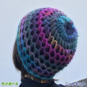 ●編み針セット●ドミナとドミナノームで編む立体的なリバーシブルの帽子&ネックウォーマー ダイヤモンド毛糸 編み図 teamiohenya