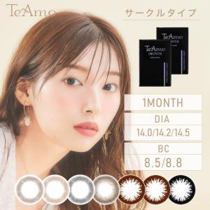 カラコン  カラーコンタクト ティアモ TeAmo 1ヶ月 マンスリー ブラウン グレー ブラック ...